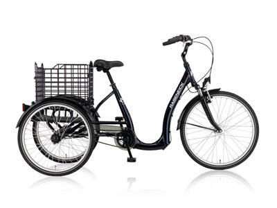 Rabeneick - Mobility Triangle Spectro Angebot