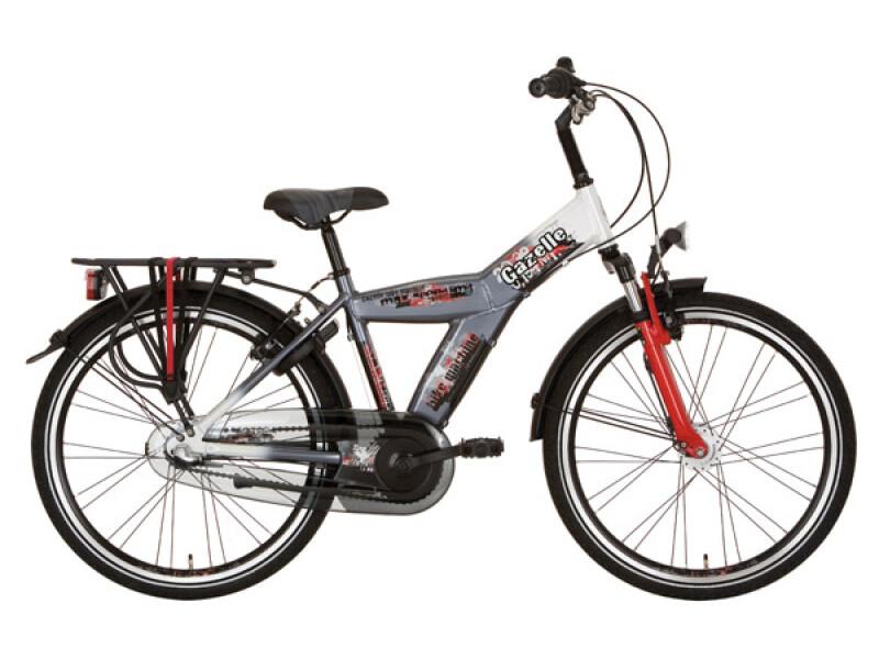 Gazelle Bike Machine grau