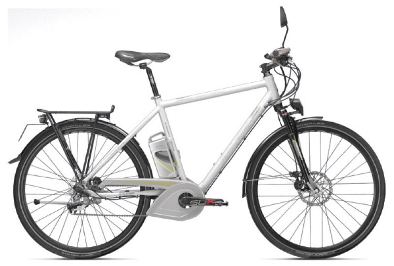 Raleigh Dover 40 Premium E-Bike