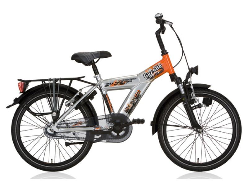 Gazelle Bike Machine silber