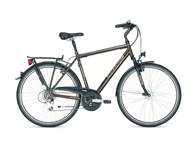 Raleigh ROCHESTER PLUS