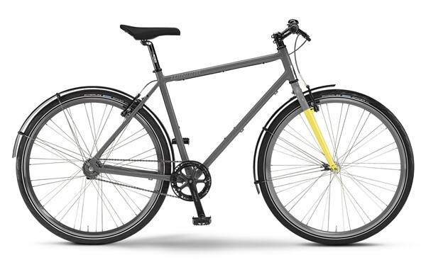 STAIGER - velo.ai86