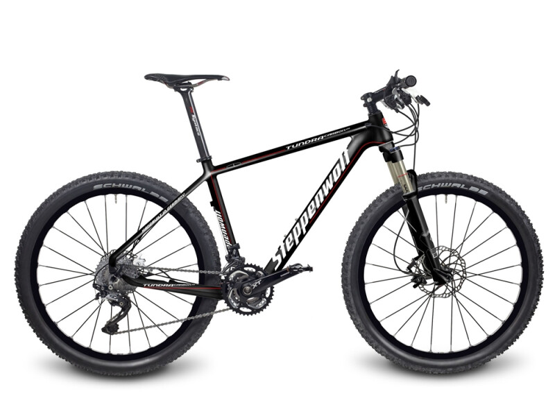 Steppenwolf Tundra Carbon 29 PRO