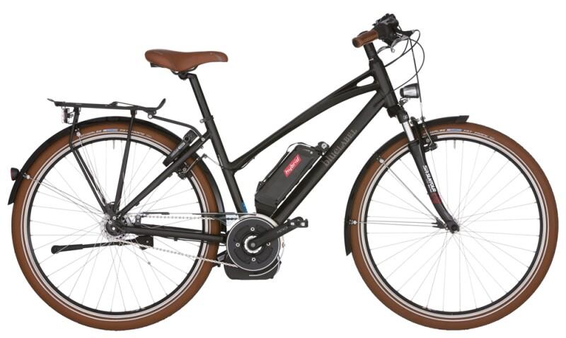 Riese und Müller blueLABEL Cruiser Mixte NuVinci hybrid E-Bike
