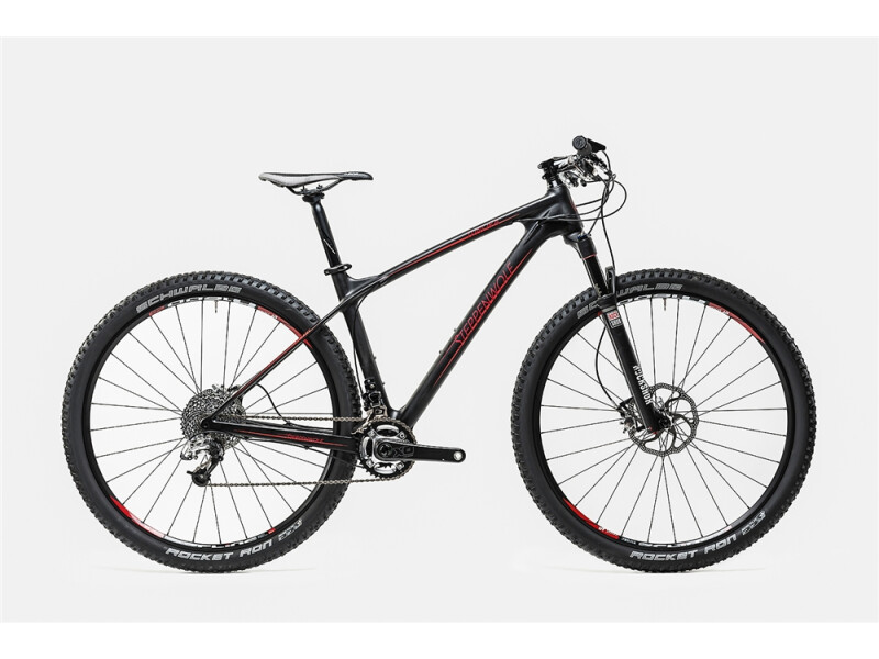 Steppenwolf Tundra Carbon 29/80