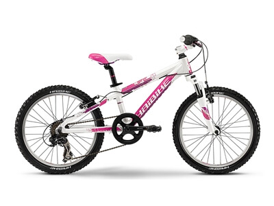 Haibike - Little Life 20 Angebot