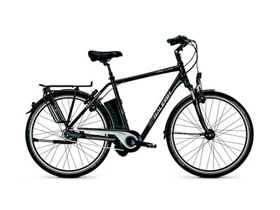 Raleigh - Dover Impulse 8 HS/8R HS/He/Magicblack/17 Ah Angebot