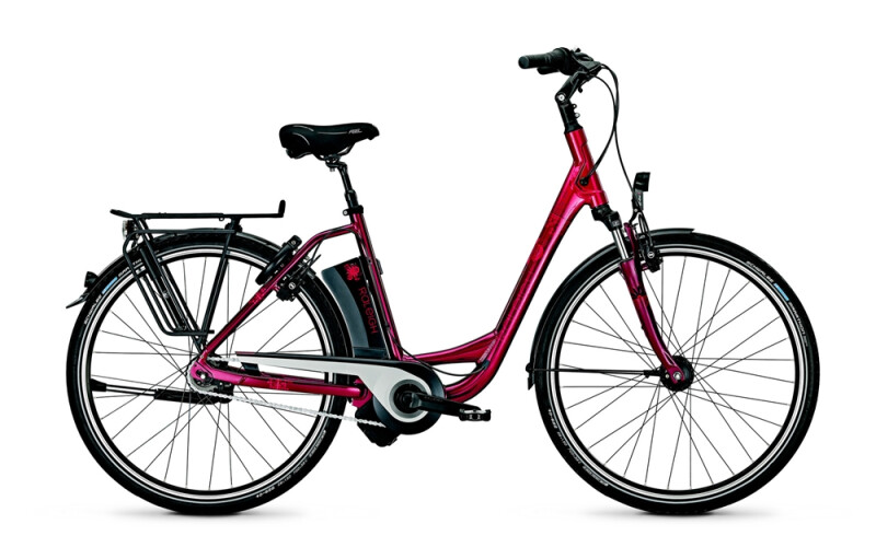 Raleigh - Dover Impulse 8 HS/8R HS/Wa/Red/14,5 Ah Angebot