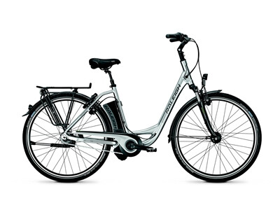 Raleigh - Dover Impulse 8 HS/8R HS/Wa/Silver/14,5 Ah Angebot