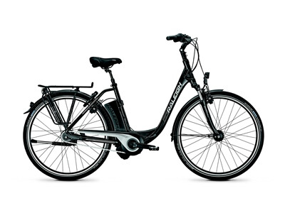 Raleigh - Dover Impulse 8 HS/8R HS/Ti/Magicblack/17 Ah Angebot