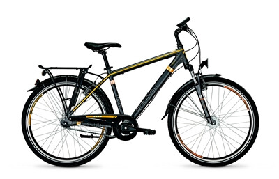 Raleigh Schoolmax Plus HE 26 Angebot
