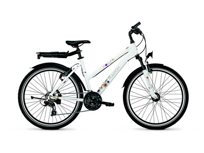 Raleigh - MaxLife/ Y-Type Angebot