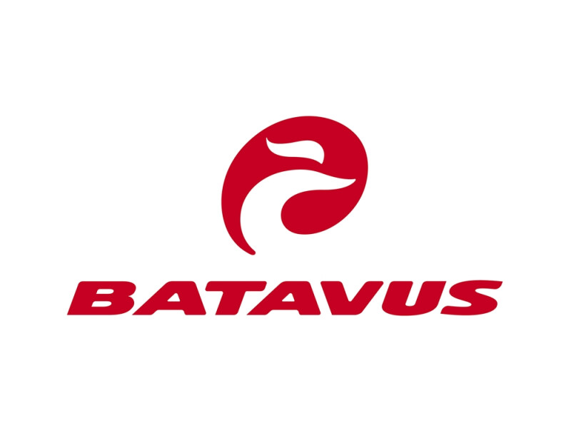 Batavus Zonar Comfort