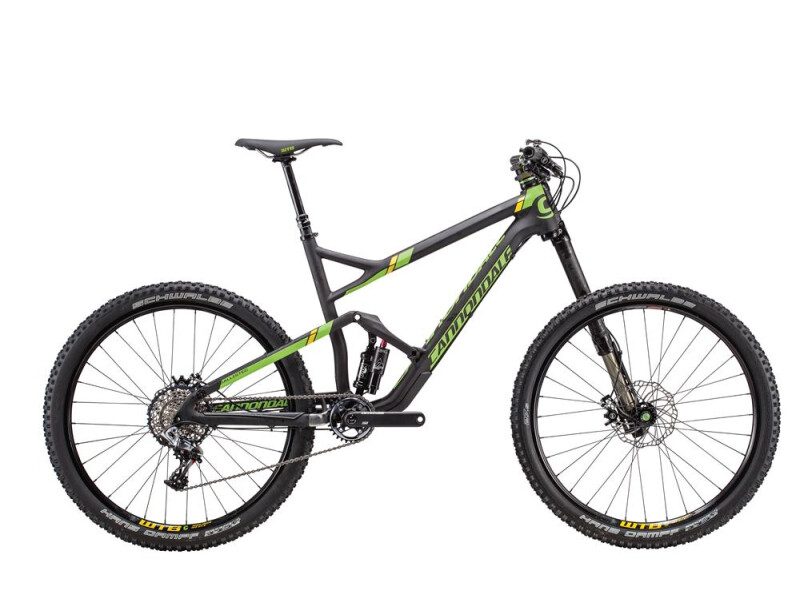 Cannondale Jekyll Carbon Team