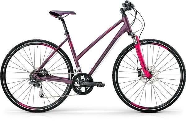 CENTURION - Cross Line Pro 400 Lady Lila (schwarz/pink)