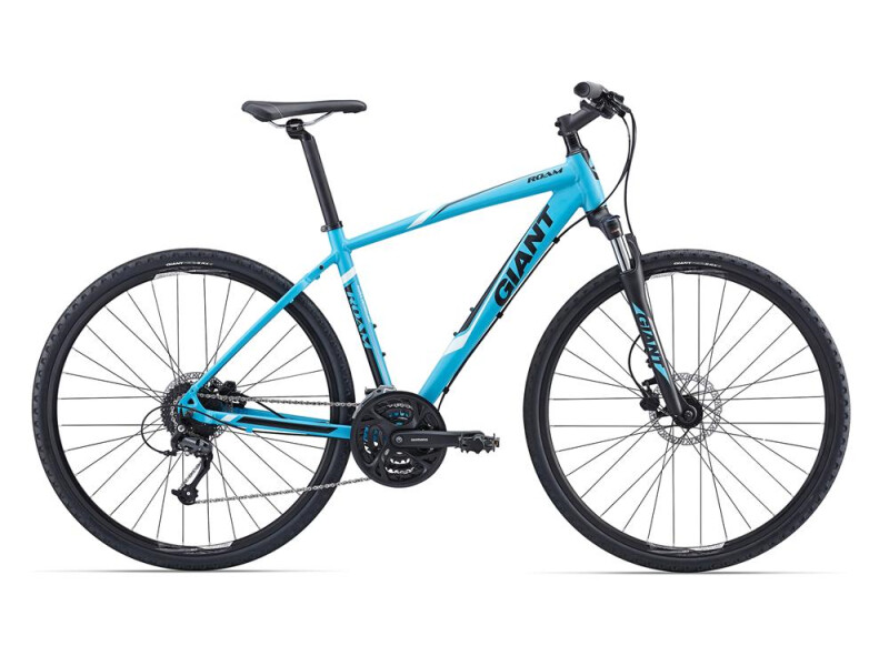 GIANT Roam 2 LTD