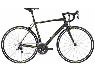 Bergamont - BGM Bike Prime 7.0 Angebot