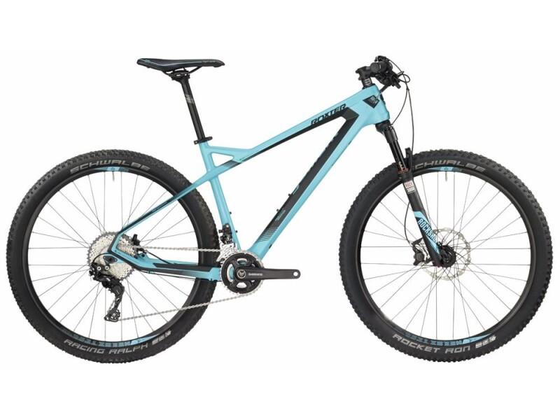 Bergamont BGM Bike Roxter 9.0