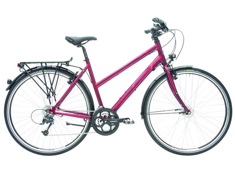 Maxcycles Traffix Rohloff Evo 1