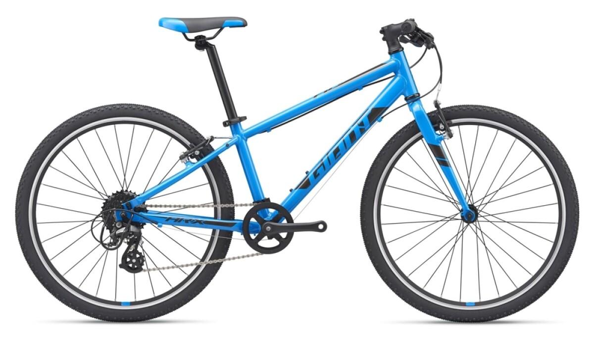 GIANT ARX 24 blue Details