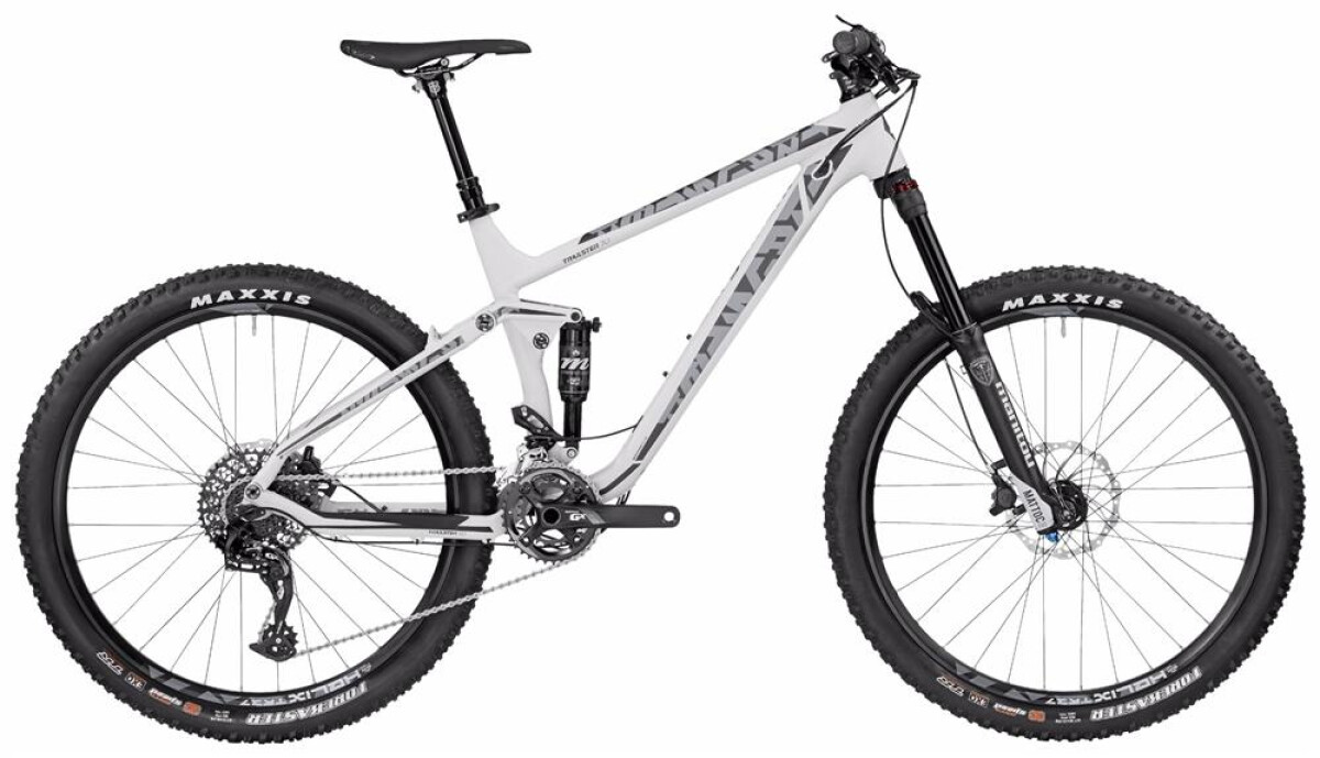 Bergamont BGM Bike Trailster 7.0 Details