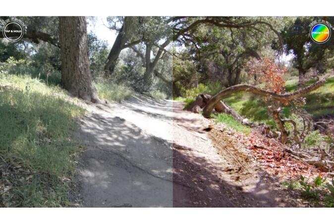 Brillen Uvex
