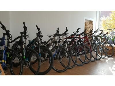 E-Bikes sind...