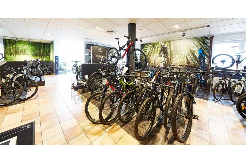 Mountainbike Abteilung