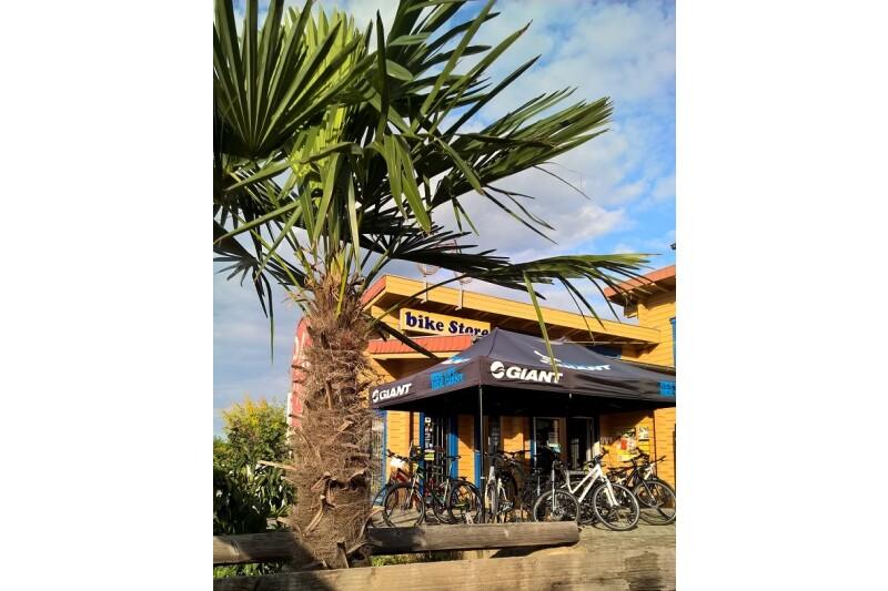 Bike Store unter Palmen mit Giant