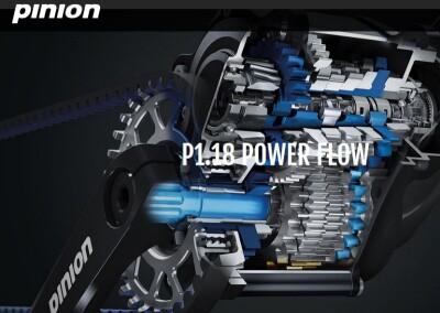 Pinion P1.18 Getriebeschaltung
