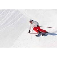 Wollen Sie Spaß beim Skifahren haben?