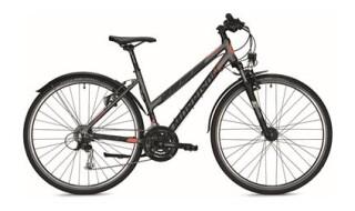 Morrison X 2.0 Trapez von Fahrrad Wollesen, 25927 Aventoft