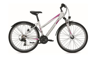 Morrison ATB Beaver Trapez 27.5 White-Violet-Glossy 2018 von Fahrrad Imle, 74321 Bietigheim-Bissingen