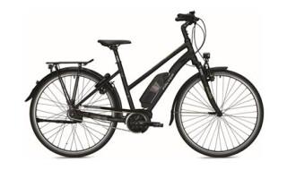 """Falter 26""""/28"""" Alu E-Bike 9.5/9.5 RT von Zweirad Sandmann, 21481 Lauenburg"""