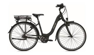 Falter E 9.0 RT schwarz von Fahrrad Gerth, 04626 Schmölln