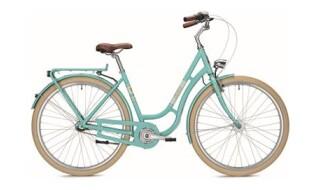 Falter R 3.0 von Fahrrad Wollesen, 25927 Aventoft
