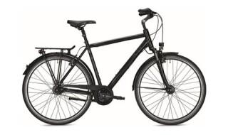 Falter C 5.0 Herren schwarz von Fahrrad Lohmeier, 32361 Preußisch Oldendorf