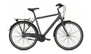 Falter C 3.0 (Mod. 2018) von Vilstal-Bikes Baier, 84163 Marklkofen