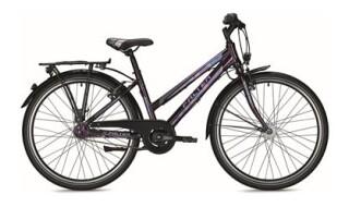 Falter FX 607 von Zweirad Brüstle, 75031 Eppingen