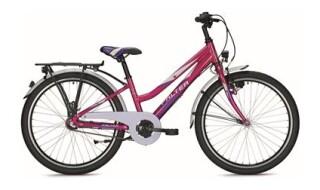 Falter FX 403 ND von Zweiradfachgeschäft Hochrath, 46399 Bocholt - Holtwick