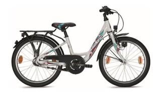 Falter FX203 von Mattheß` Bike Shop, 06901 Kemberg