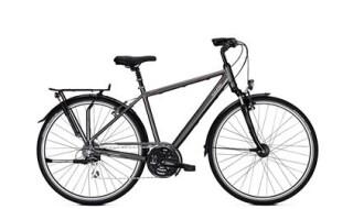 Raleigh Oakland Plus - 2018 von Erft Bike, 50189 Elsdorf