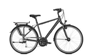 Raleigh Oakland Premium - 2018 von Erft Bike, 50189 Elsdorf