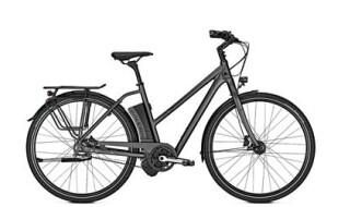 Raleigh Leeds Plus, Trapez, Diamondblack matt von Bike & Co Hobbymarkt Georg Müller e.K., 26624 Südbrookmerland