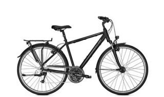 Raleigh Road Classic 24, Trekkingbike Herren, 24-Gang-Kettenschaltung, 45 Lux Scheinwerfer von Henco GmbH & Co. KG, 26655 Westerstede