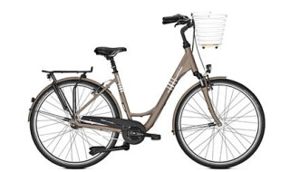 Raleigh Unico Life von SANDAU Bike + Sport, 29633 Munster