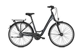 Raleigh Unico DLX - 2018 von Erft Bike, 50189 Elsdorf