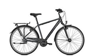Raleigh Unico Deluxe von Lamberty, Fahrräder und mehr, 25554 Wilster