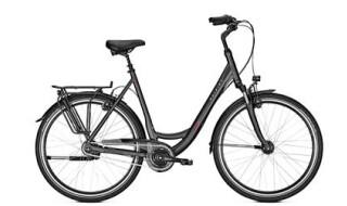 Raleigh Unico XXL, Citybike extra stark, bis 170 kg Gesamtgewicht belastbar. von Henco GmbH & Co. KG, 26655 Westerstede