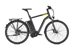 Raleigh Stoker 8 Premium von Fahrrad-intra.de, 65936 Frankfurt-Sossenheim